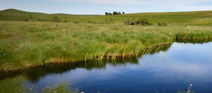 Le projet d'extension de la réserve naturelle